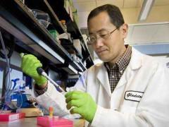 日本科学家研发出人造血可保存一年 适合任何血型